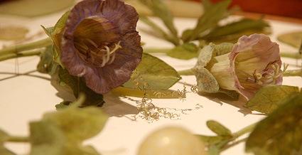 museum-flowers-3